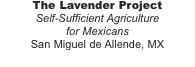 The Lavender Project Self-Sufficient Agriculture  for Mexicans